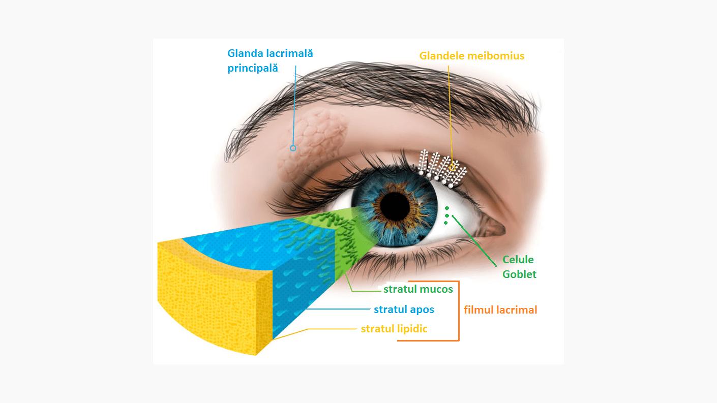 Mesele de testare a ochilor sunt aceleași